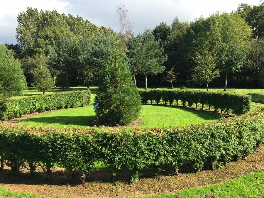 Redwood world smisby bluebell arboretum nursery for Garden design derbyshire